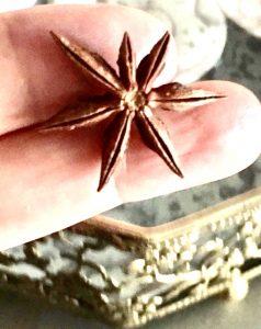 o cheiro do anis estrelado
